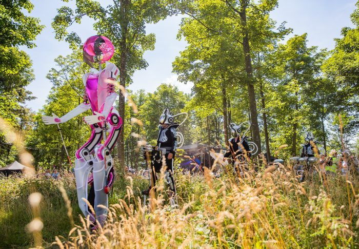 Robots in a field